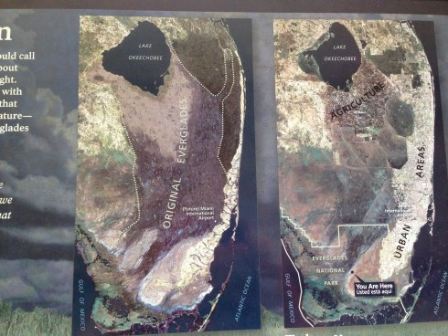 Everglades: Then & Now