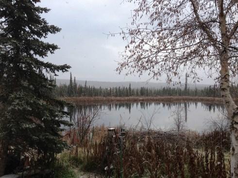 Fairbanks First Snow
