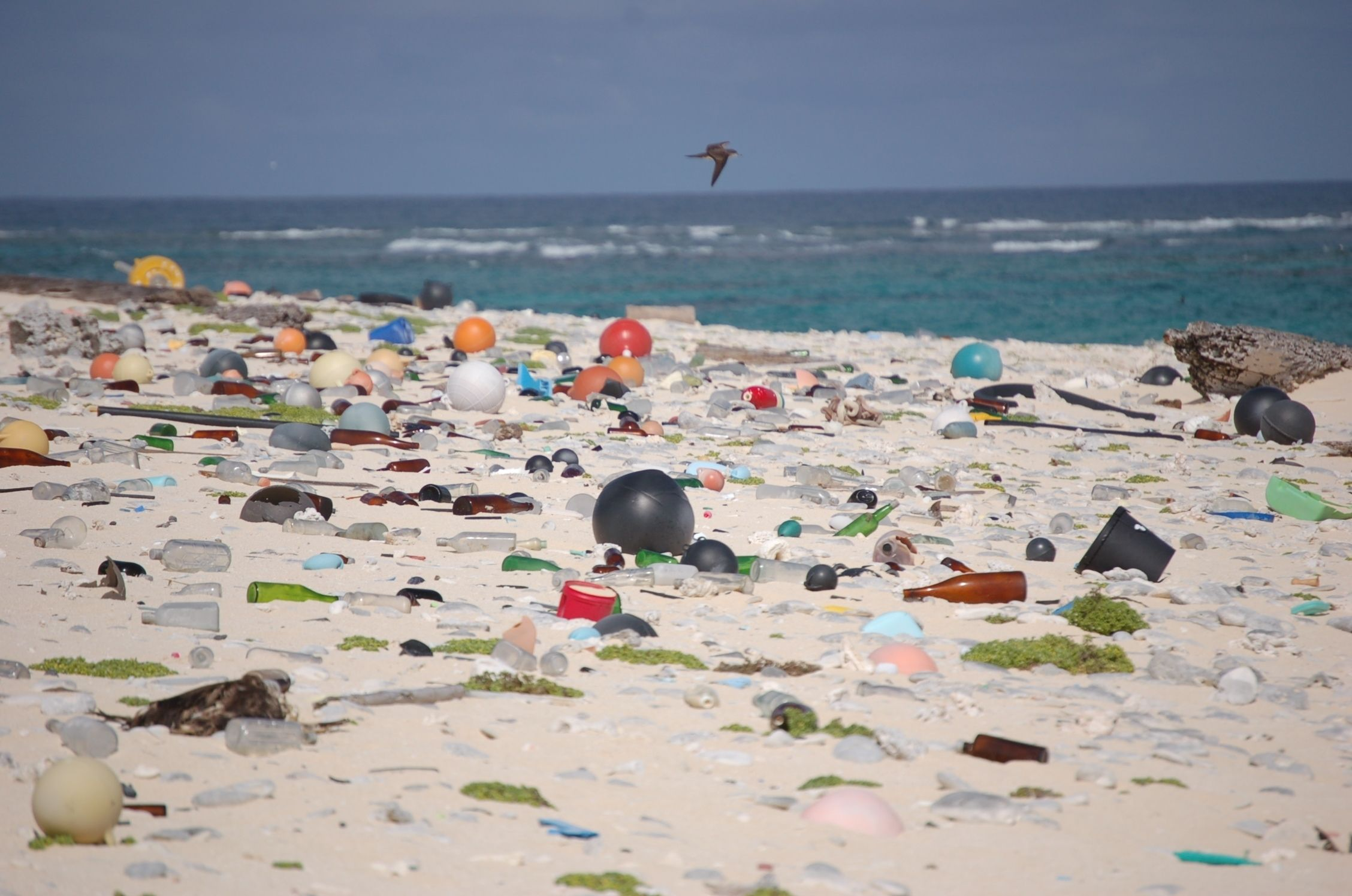 We're Drowning in Plastic. Here's a Solution