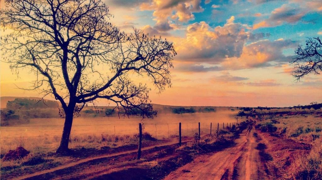 Caminhos de Rosa – saiba como percorrer os caminhos do escritor pelo sertão mineiro.