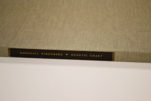 A large flat closed box covered with fabric and resembling a library book, with a label on the edge reading Marshall Nitenberg ~ Genetic Chart