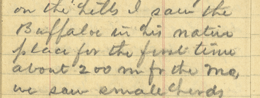 A detail from a diary hadwritten in pencil.