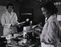 Photo of dietitians weighing food
