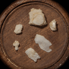Six fragments of bone on a round wooden display stand.