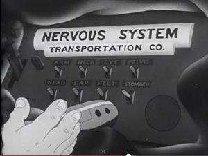 The Nervous System depicted as a pneumatic tube system.