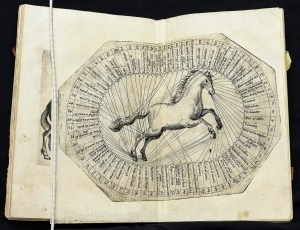 A foldout illustration showing a rearing hourse encircled by a ring of numbered labels with lines to the illustration indicating the relevant part of the horse.