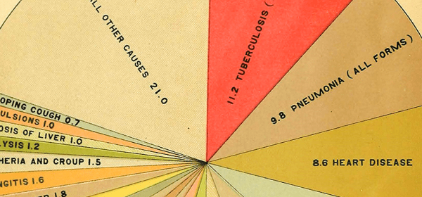 A pie chart showing rates of mortality for different causes for 1907; Tuberculosis ranks first at 21%.