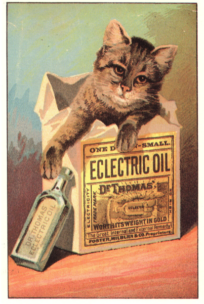 Advertisment postcard for Eclectric Oil showing a kitten sitting in the package.