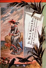 Illustration of a woman sitting on a cliff overlooking the ocean