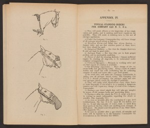 Three drawing of a horse on left page and text on right page.