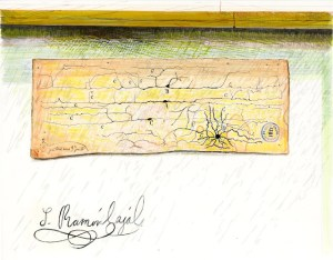 A drawing of a slip of paper with drawings of web-like structures, and a signature.