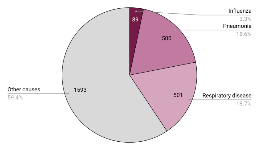 A pie chart showing a little more than a third of deaths attributed to various respriratory diseases, with influenza at 3.3% and all other causes at 59.4%