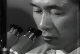 An asian man looks into a microscope.