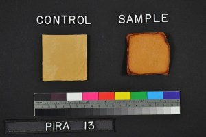 Squares of leather marked control (normal) and Sample (browned around the edges).