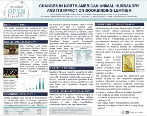 An informational poster with headings: breed specialization, environment and diet, abattoir trends, skin and leather evaluaiotn, and georeferenced database.