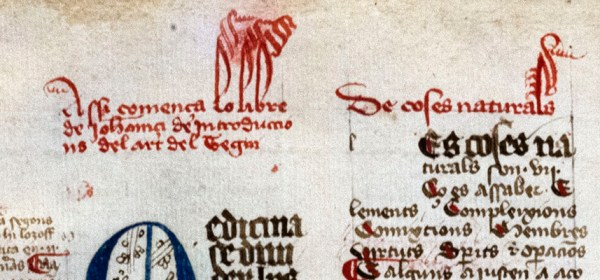 A manuscript in two columns and three colors, with decorative inital letters.