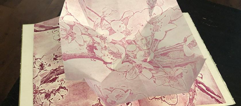 """Inside spread from """"Caudex Folium"""""""