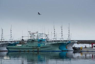 Hokkaido is full of fisherman.