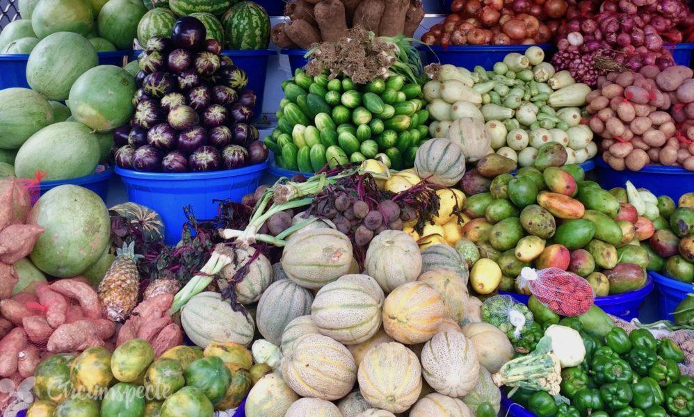genetically modified food food security in ghana circumspecte