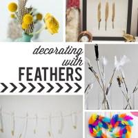 feather home decor roundup