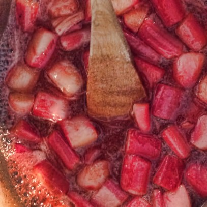 rhubarb and vanilla jam making