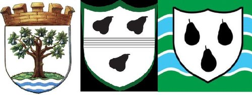 black pear logo