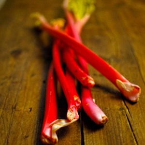 rhubarb harvested