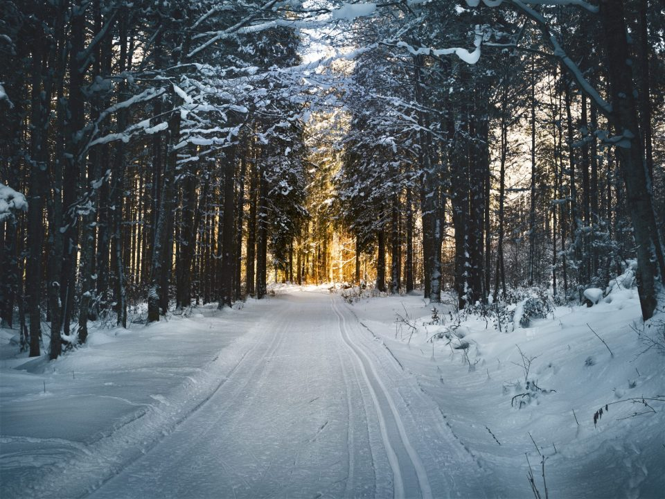 Winter is coming, what does Salesforce Winter 18 release have in store for us?