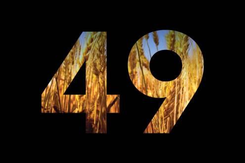 49 дней