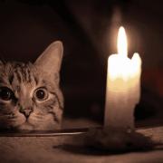 Ритуал