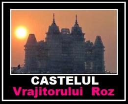 Castelul Vrajitorului Roz