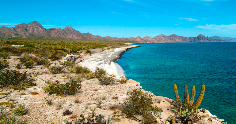INE de Baja California