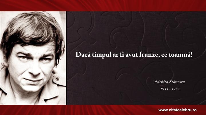 """Imagini pentru """"Dacă timpul ar fi avut frunze, ce toamnă!"""" ~ Nichita Stănescu"""