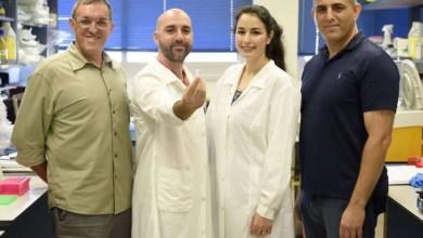 Científicos logran almacenar información digital en ADN