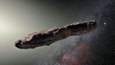 Photo of Oumuamua 2.0, el segundo objeto interestelar podría haber entrado en nuestro Sistema Solar