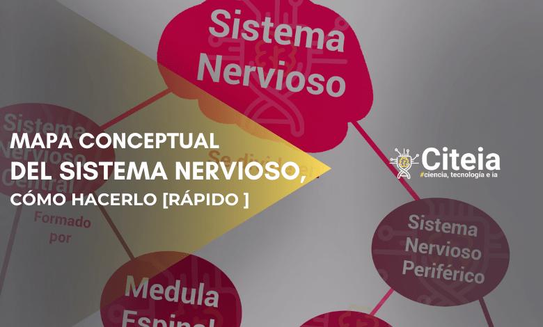 mapa conceptual del sistema nervioso portada de artículo