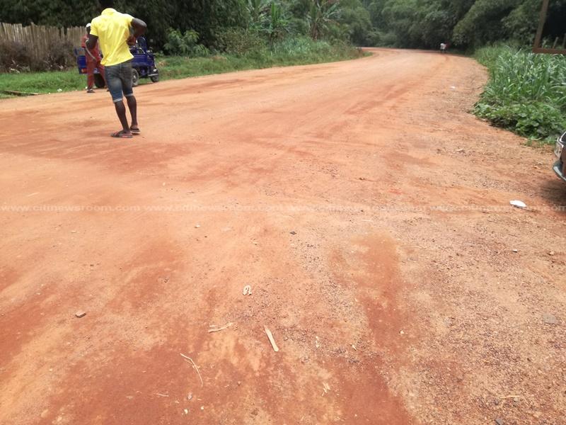Halted Kakum National Park road project frustrates visitors