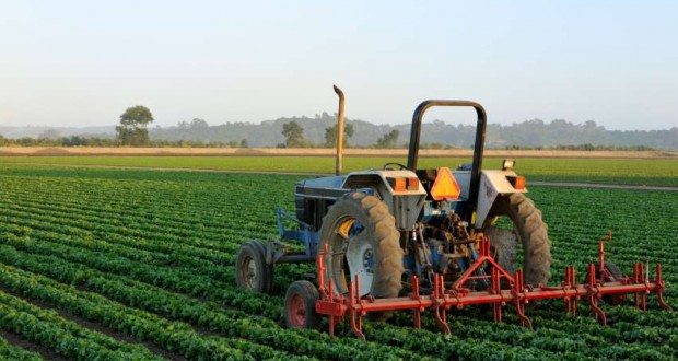 8th annual Pre-Harvest and Exhibition Conference set for Oct. 3