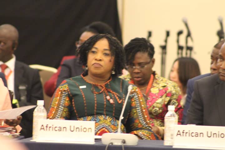 Ghana to step-up relations with Japan for industrialization agenda – Ayorkor Botchwey