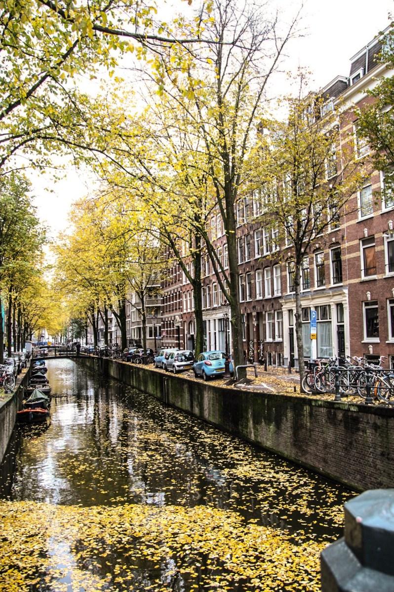 Herfst-Amsterdam