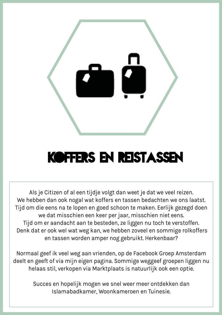 Spring Challenge 2020 Citizen of koffers en reistassen opruimen en schoonmaken