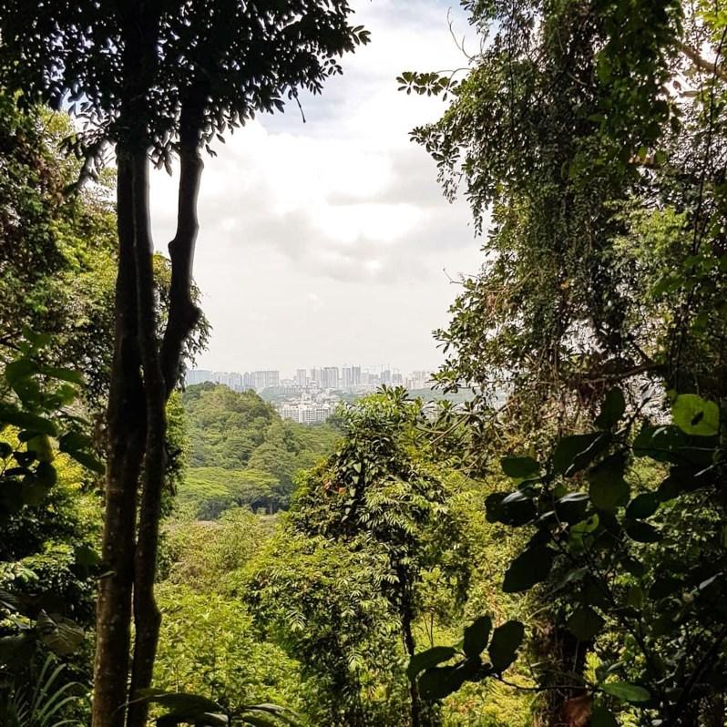 Singapore wereldstad in het groen