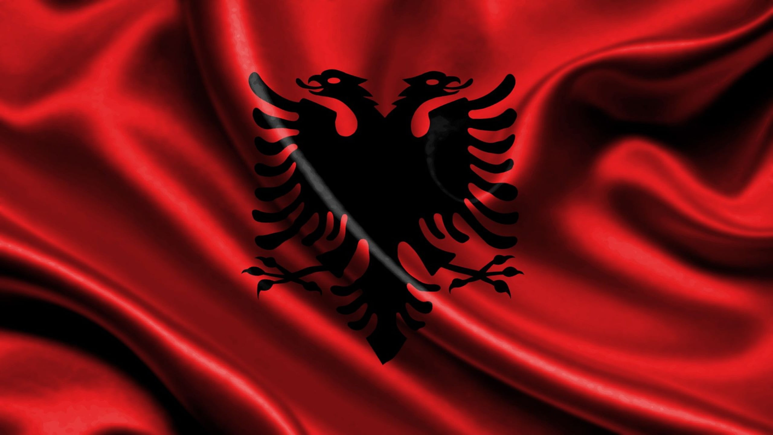 hd-albanian-eagle-wallpaper-dowload