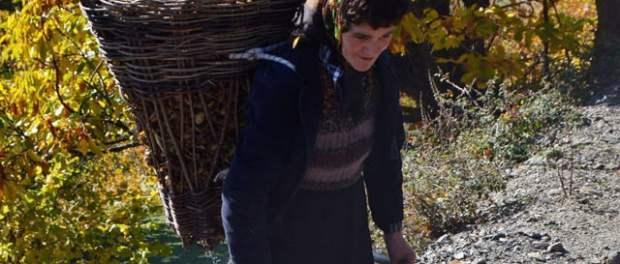 Grua duke transportuar bar në zonën e Nikaj-Mërturit. Foto: Amarildo Topi / Citizens Channel