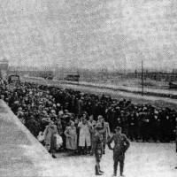 Arrivée au camp de concentration d'Auschwitz-Birkenau