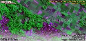Data Olahan Citra Satelit QuickBird 4 Band Warna Hijau Semu Wilayah Tapanuli Selatan - Sumatera Utara
