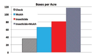 Figure 6. Average boxes per acre by treatment harvested on January 4, 2016.