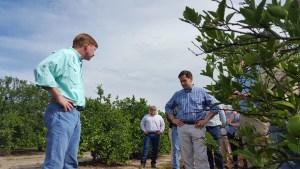 senator rubio putnam citrus grove tour