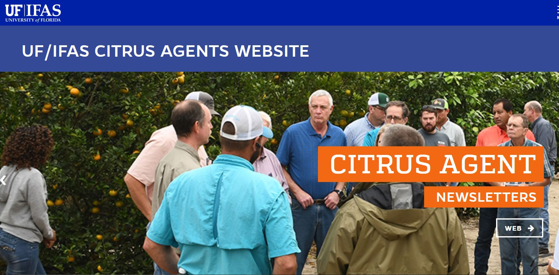"""Featured image for """"Where to Find Information About Citrus Research"""""""
