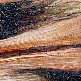 LA CITTÀ INVISIBILE - sabbia, sabbia lavica, fibre vegetali e vernice su compensato - cm. 25 x 74 (particolare)
